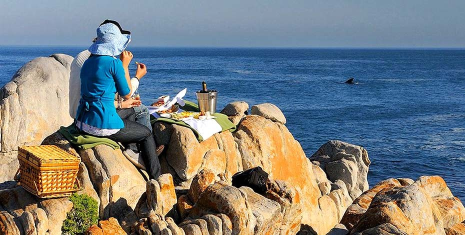 Picnic on South Africa's Whale Coast