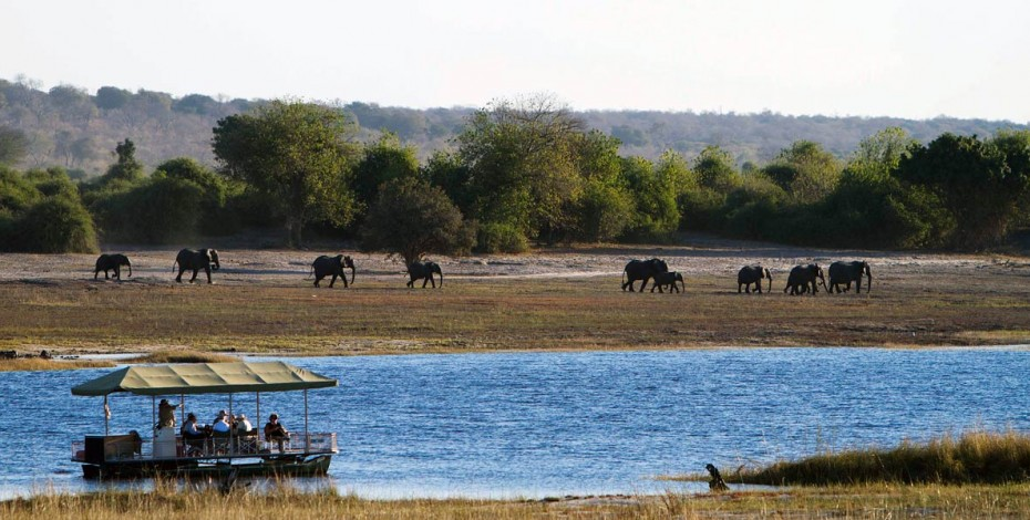 Cruising Botswana's mighty Chobe River