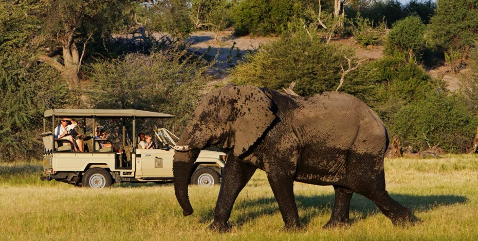 Game viewing on a Botswana family safari