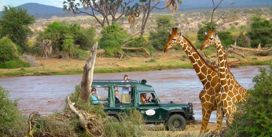 Game drive at Samburu Intrepids