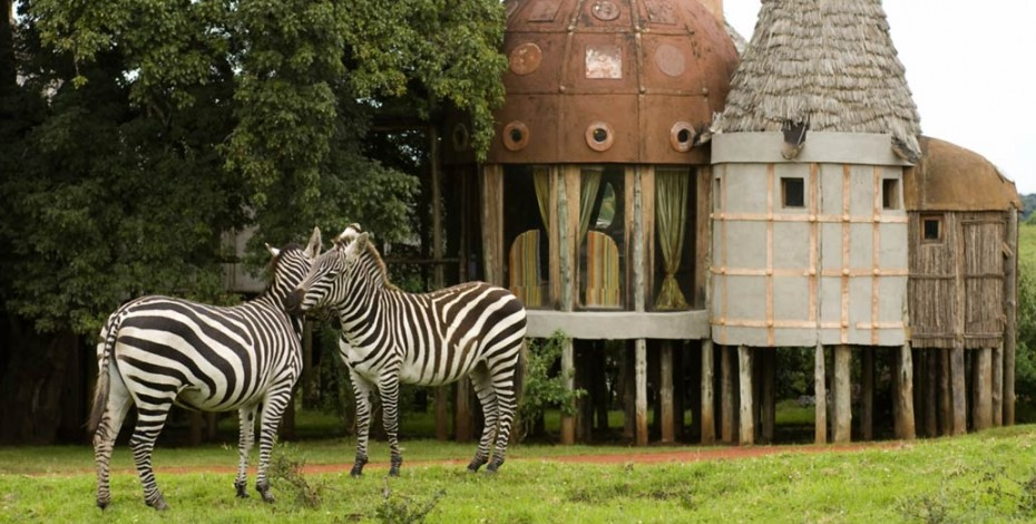 Ngorongoro Crater Lodge zebras