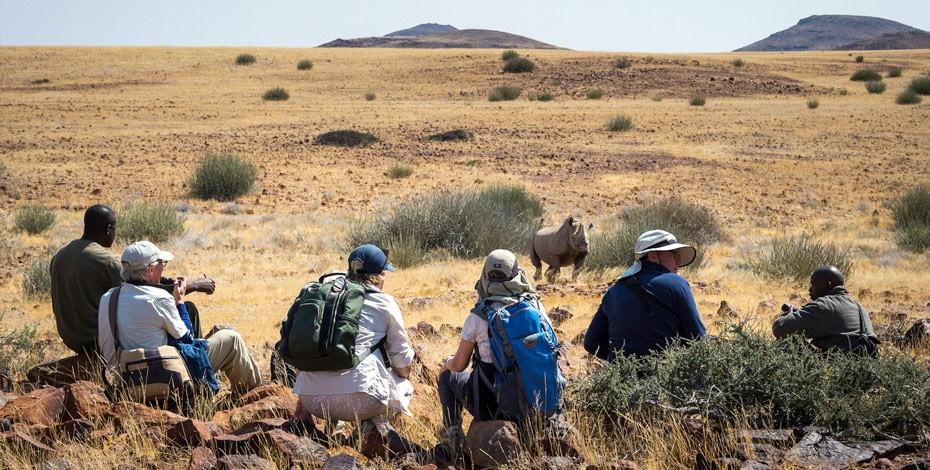 Namibia's endangered black rhino