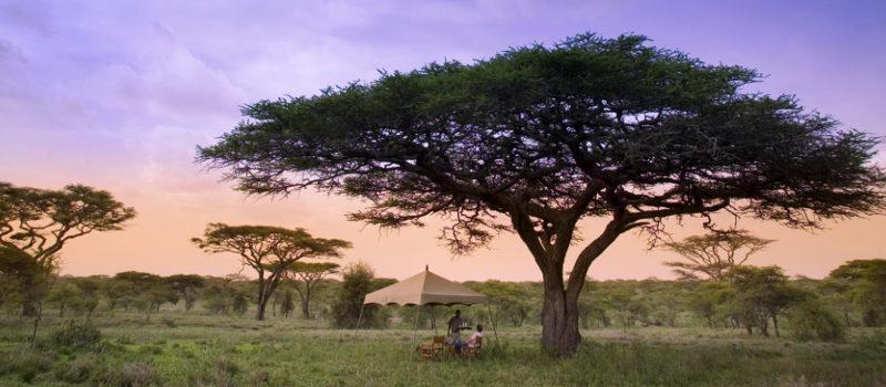 Sunset in the Serengeti | Serengeti Under Canvas