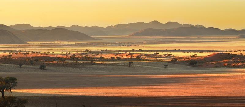 Namibian Dina Plains