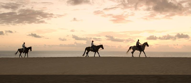 Horseriding on the dunes in Mozambique