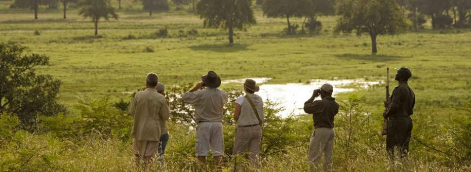 Walking safari at Puku Ridge Camp