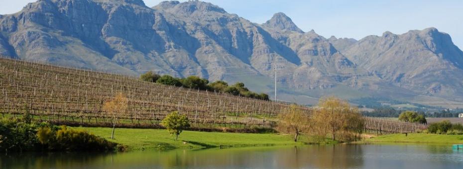 The scenic Cape Winelands