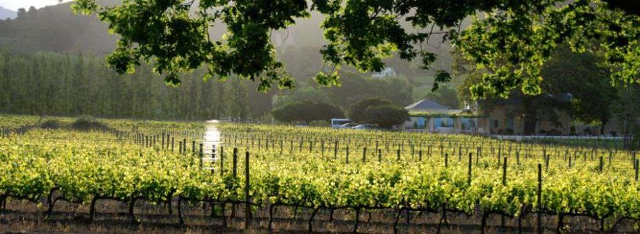 Franschhoek Winelands, Auberge Clermont