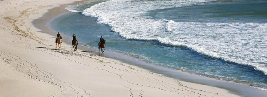 Horse riding on the beach at Grootbos Reserve