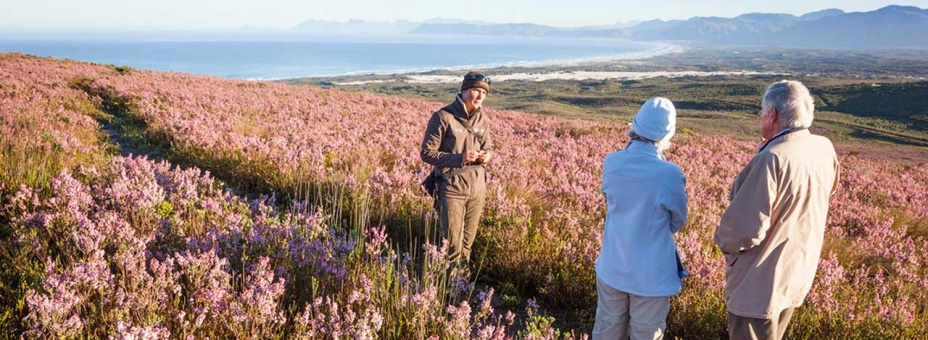 Fynbos safari at Grootbos Private Reserve