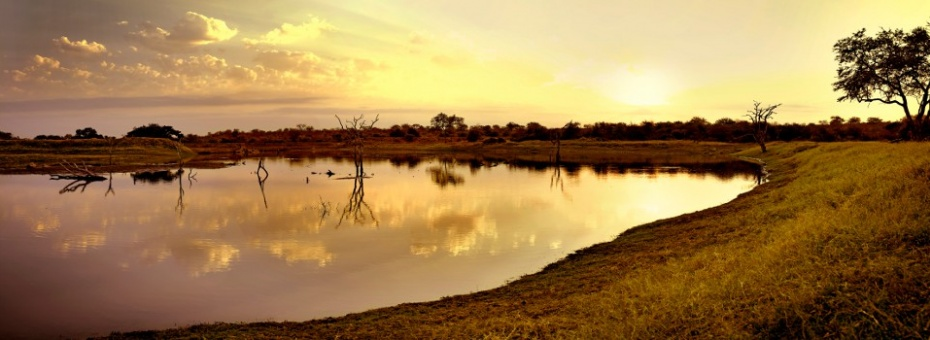 Sunrise in the Timbavati