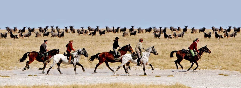 Jack's Camp offers game viewing on horseback