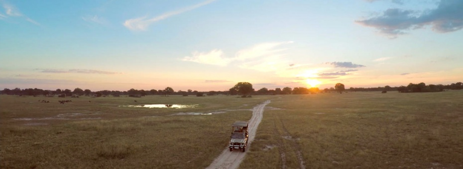 On safari in Hwange National Park
