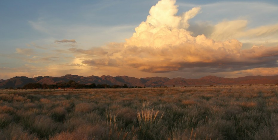 Etosha-safari-camp