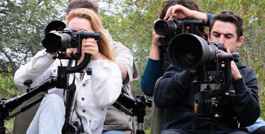 Simbavati photographic safari