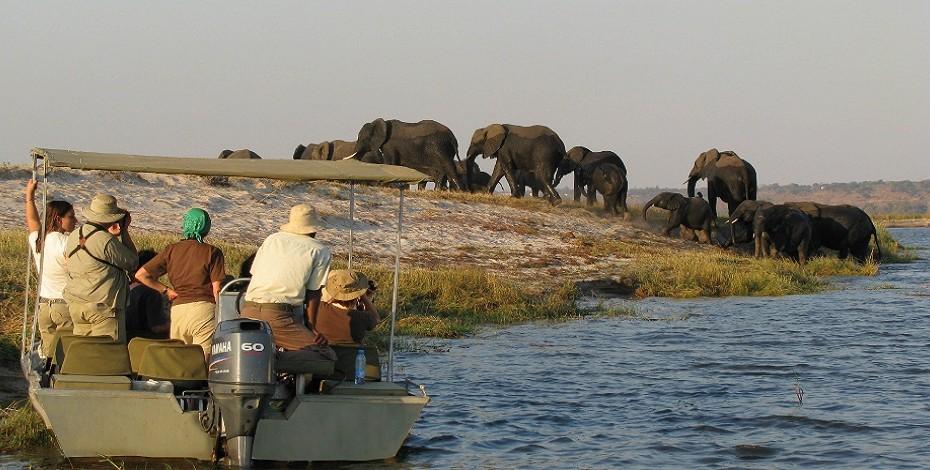 Zambezi Queen river safari