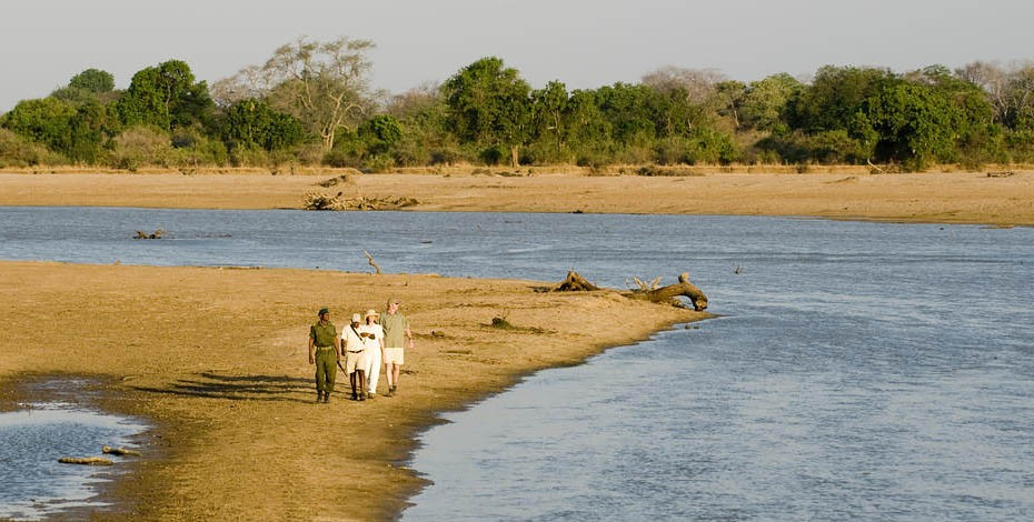Guided walk in Zambia's South Luangwa