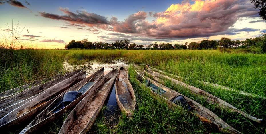 Beautiful sunrise iin the Okavango