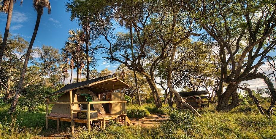 Tented accommodation in the Okavango