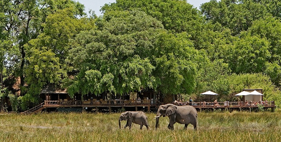 Okavango Delta luxury lodge