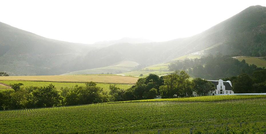 Groot Constantia wine farm in Cape Town