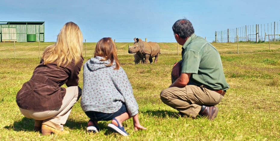 Family safari in the malaria-free Eastern Cape