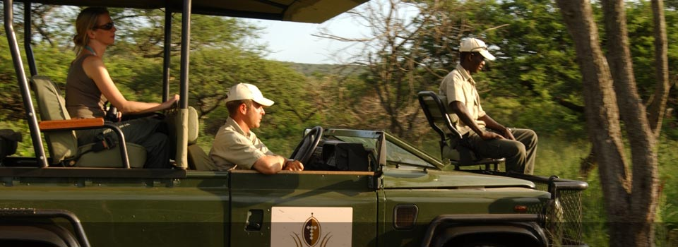 Thanda Private Game Reserve offers a big five game experience