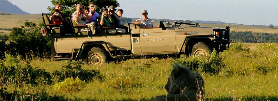 Game Drive at Lalibela Mark's Camp