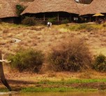 Exterior views of Tortilis Camp in the Amboseli Region of Kenya