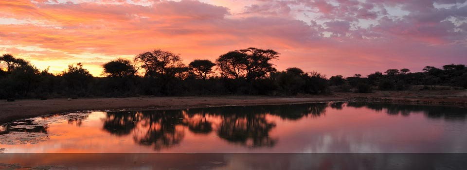 A beautiful African sunset over the Kruger National park